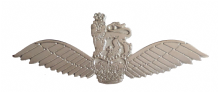 Pilot Wings British Army Air Corps AAC MOD Nickel Pin Badge / Brevet
